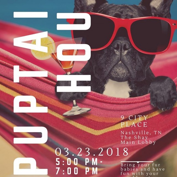 #happynationalpuppyday Join us tonight for a Puptail Hour from 5-7PM! Bring your fur babies and enjoy refreshments and cocktails on us!! #makelifehappen #onec1ty #livetheshay #dog #dogsofinstagram #cocktails #nashville #puppy #dogmom #doglife